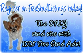 Click Here to visit FreeStudListings.com